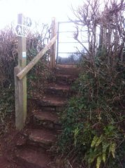 Repairs to steps and gate at Compton Martin, 20th January 2017 (After)