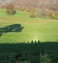 shadowy.ramblers.CMS.jpg